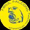 Friul Falcons UD